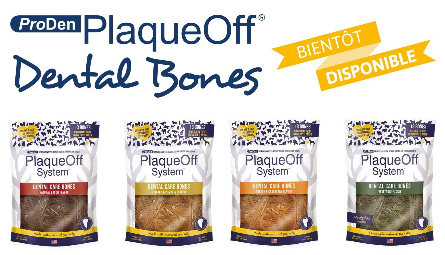 Dental Bones, bientôt disponible